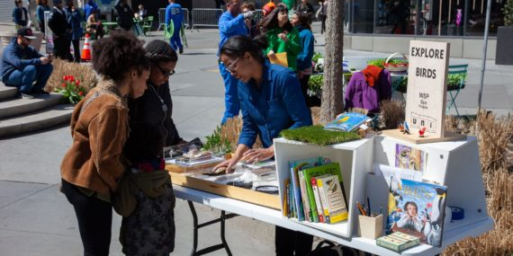 EXPLORE BIRDS with the Uni Project at Albee Square