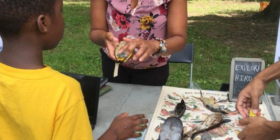 EXPLORE BIRDS, Pelham Bay Park Nature Day 2019