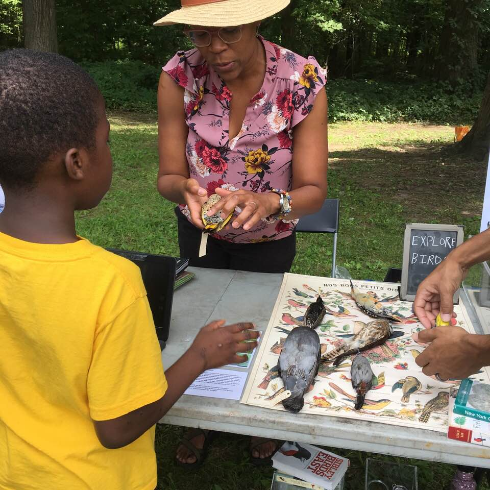 EXPLORE BIRDS at Pelham Bay Park Nature Day