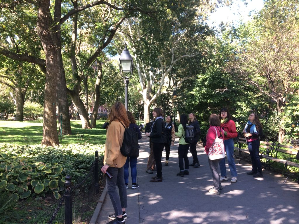 Feminist Bird Club + Eco Projects walk in Washington Square Park, Oct 5, 2019